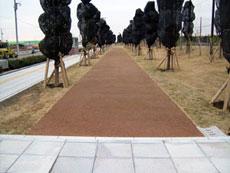 幕張歩経路(千葉県)