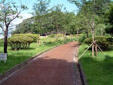 福浦島公園自然歩道(宮城県)